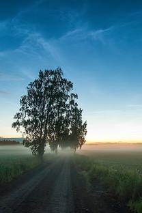 超大自然景色手机壁纸