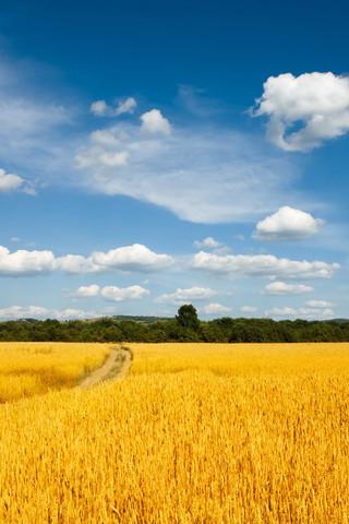 高清风景美景手机壁纸