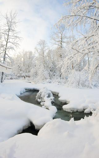 唯美雪景冬季手机壁纸