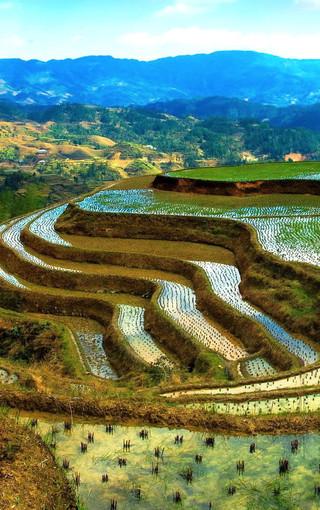 山水自然风景手机壁纸